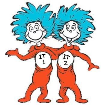 Thing 1 and Thing 2 as visual for Bimodal IT
