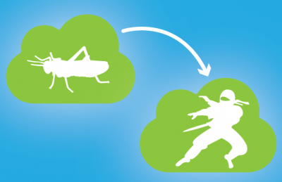multicloud adoption stages from grasshopper to ninja