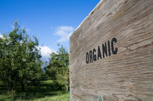 Oregon Tilth organic certification goes cloud